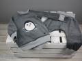 schlafanzug selbstgenaeht mit pinguin applikation. JanaKnöpfchen. Nähblog - Nähen für Jungs